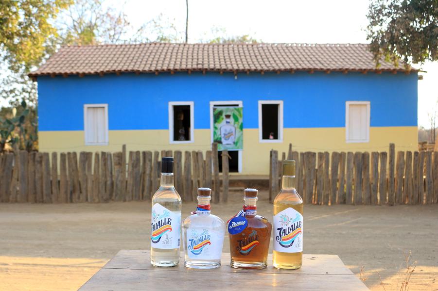 Limoeiro - A fazenda da cachaça da Bahia
